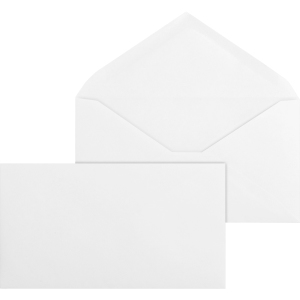 Business Source No. 6-3/4 White Wove V-Flap Business Envelopes