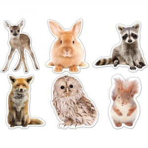 Carson Dellosa Education Woodland Whimsy Animals Cut-Outs Set