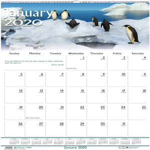 House of Doolittle Earthscapes Wildlife Wall Calendars