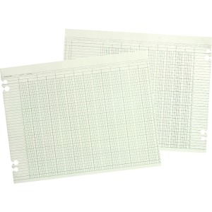 Wilson Jones 20-Column Ruled Sheets