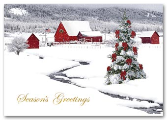Rural Wonderland Holiday Card