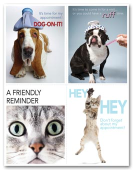 Veterinarian Reminder Card, Dogs & Cats Laser Postcard