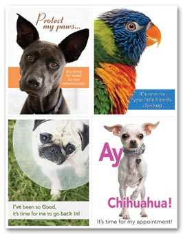 Veterinarian Reminder Card, Dogs & Birds Laser Postcard
