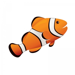 MAGNETIC WHITEBOARD ERASER CLOWN  FISH 3-1/2 X 3-1/2