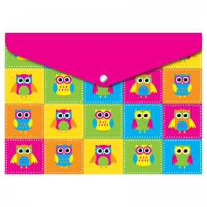 DECORATED POLY FOLDER COLOR OWLS