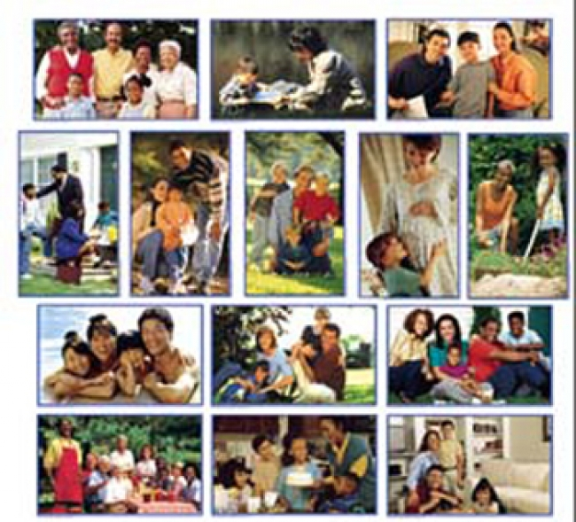 PHOTOGRAPHIC LEARNING CARDS  FAMILIES