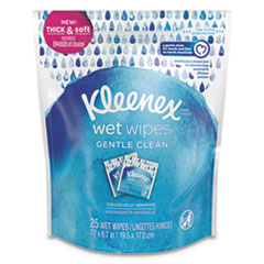 Wet Wipes Gentle Clean for Hands and Face, 6.7 x 7.7, White, 25 Wipes/Pack
