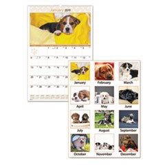 Puppies Monthly Wall Calendar, 15 1/2 x 22 3/4, 2019