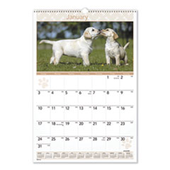 Puppies Monthly Wall Calendar, 15 1/2 x 22 3/4, 2016