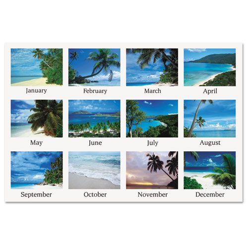 Tropical Escape Wall Calendar, 15 x 12, 2018