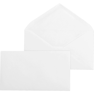 Business Source Diagonal Seam No. 9 Envelopes