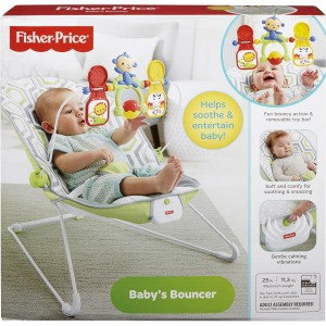Fisher-Price Baby's Bouncer