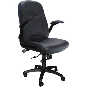 Mayline Comfort Big & Tall 6446AG Executive Chair with Pivot Arms