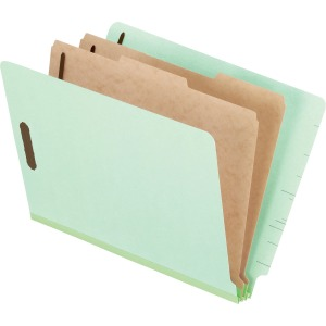 Pendaflex Letter Recycled Classification Folder