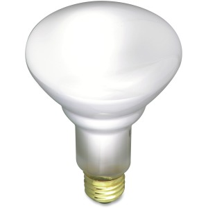Satco 65-watt BR30 Incandescent Floodlight