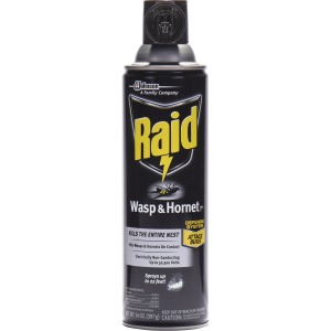 Raid Wasp/Hornet Killer Spray