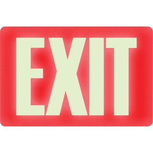 HeadLine Glow-in-the-Dark EXIT Sign