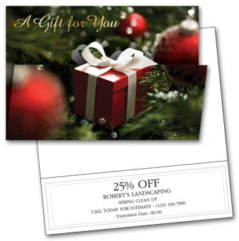 Special Gift Holiday Card