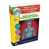 SENSES NERVOUS RESPIRATORY SYSTEMS  INTERACTIVE WHITEBOARD LESSONS