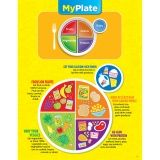 MY PLATE CHART