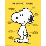 PEANUTS THE PERFECT FRIEND 17X22  POSTER