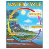 CHART THE WATER CYCLE