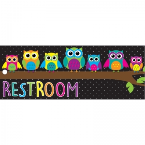 "Owls Restroom Laminated 2-Sided Pass, 9"" x 3.5"""