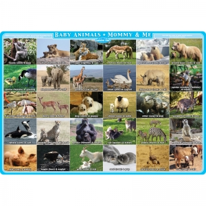 "Smart Poly Single Sided PosterMat Pals, Mommy and Me Animals, 12"" x 17.25"""