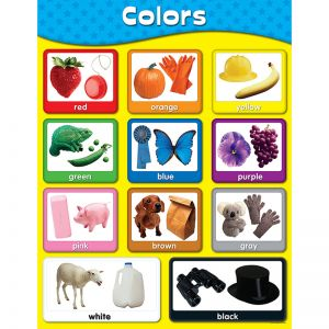 Colors Chart, Pack of 6