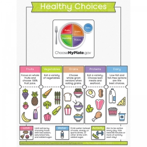 HEALTHY CHOICES CHARTLET GR K-5  SCIENCE