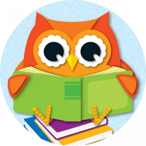 READING OWL TWO SIDED DECORATIONS
