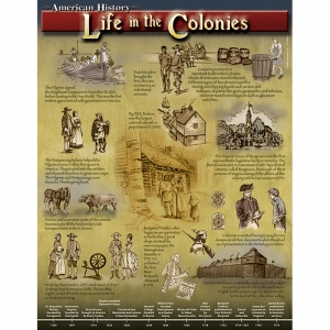 LiFE- in the Colonies Chart