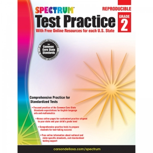 TEST PRACTICE WORKBOOK GR 2