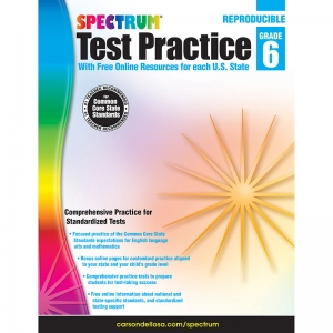 TEST PRACTICE WORKBOOK GR 6