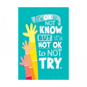 ITS OKAY NOT TO KNOW  INSPIRE U  POSTER - PAINT