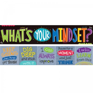 WHATS YOUR MINDSET 2 SIDED BANNER