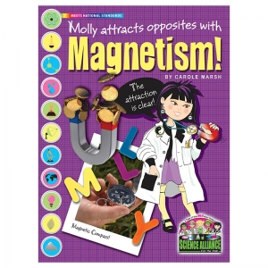 SCIENCE ALLIANCE PHYSICAL SCIENCE  MAGNETISM