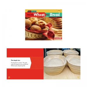 START TO FINISH WHEAT TO BREAD BK