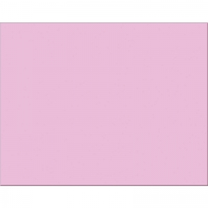 4 PLY RR POSTER BOARD 25 SHT PINK