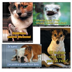 Spanish Fun Photo Posters, Set #10, 3 Sets