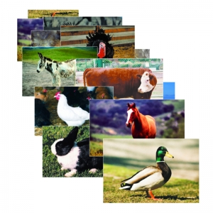 FARM ANIMAL POSTER SET SET OF 10