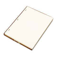 Looseleaf Minute Book Ledger Sheets, Ivory Linen, 11 x 8-1/2, 100 Sheet/Box