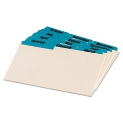 Manila Index Card Guides with Laminated Tabs, 1/3-Cut Top Tab, January to December, 4 x 6, Manila, 12/Set