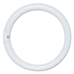 Circleline Fluorescent Tube, 22 Watts