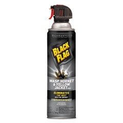 Black Flag Wasp, Hornet and Yellow Jacket Killer, 14 oz Aerosol, 12/Carton