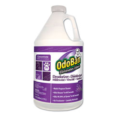 Concentrated Odor Eliminator, Lavender Scent, 1gal Bottle, 4/CT
