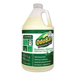 Concentrated Odor Eliminator, Eucalyptus, 1gal Bottle, 4/Carton