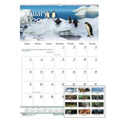 Recycled Wildlife Scenes Monthly Wall Calendar, 12 x 12, 2019