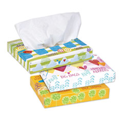 White Facial Tissue Junior Pack, 2-Ply, 40 Sheets/Box, 80 Boxes/Carton